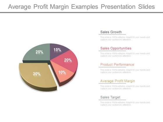 Average Profit Margin Examples Presentation Slides
