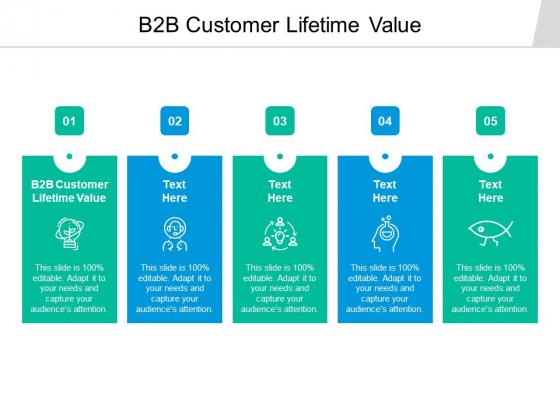B2B Customer Lifetime Value Ppt PowerPoint Presentation Show Background Cpb