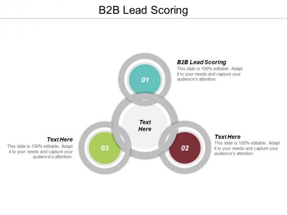 B2B Lead Scoring Ppt PowerPoint Presentation Layouts Skills Cpb