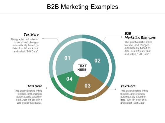 B2B Marketing Examples Ppt PowerPoint Presentation Gallery Background Image