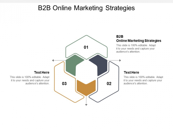 B2B Online Marketing Strategies Ppt PowerPoint Presentation Ideas Layouts Cpb