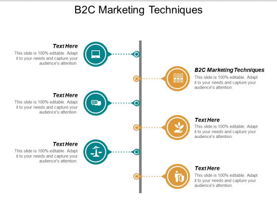 B2C Marketing Techniques Ppt PowerPoint Presentation Outline Slideshow Cpb