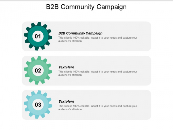 B2b Community Campaign Ppt PowerPoint Presentation Layouts Format Ideas Cpb