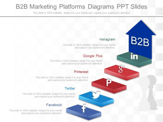 B2b Marketing Platforms Diagrams Ppt Slides
