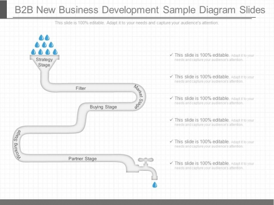 B2b New Business Development Sample Diagram Slides