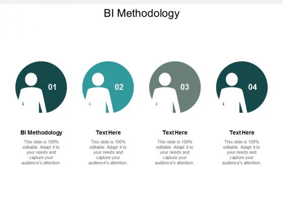 BI Methodology Ppt PowerPoint Presentation Infographic Template Inspiration Cpb