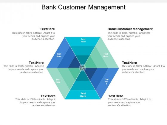 Bank Customer Management Ppt PowerPoint Presentation File Ideas Cpb