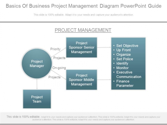 Basics Of Business Project Management Diagram Powerpoint Guide