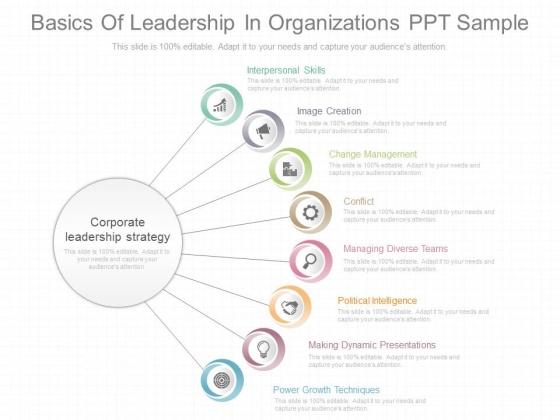 Basics Of Leadership In Organizations Ppt Sample