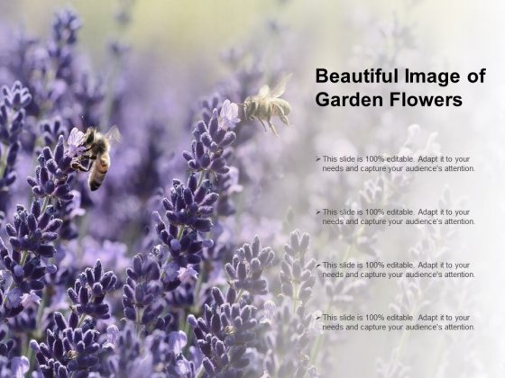 Beautiful Image Of Garden Flowers Ppt PowerPoint Presentation File Skills