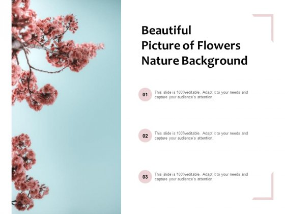 Beautiful Picture Of Flowers Nature Background Ppt PowerPoint Presentation Infographic Template Backgrounds