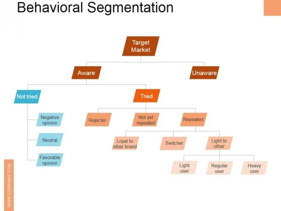 Behavioral Segmentation Ppt PowerPoint Presentation Outline Graphics Example
