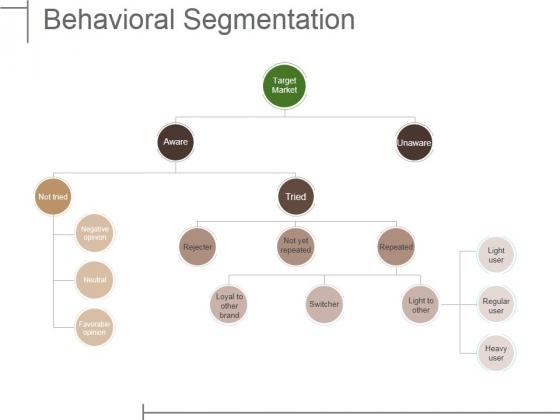 Behavioral Segmentation Ppt PowerPoint Presentation Show File Formats