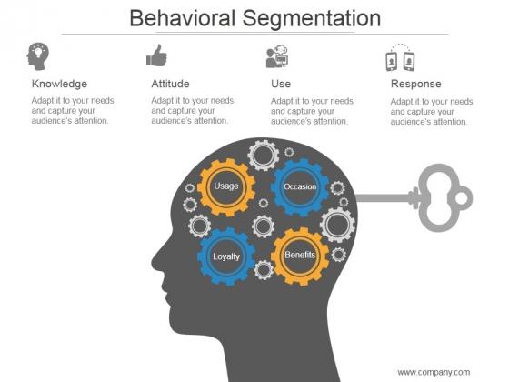 Behavioral Segmentation Ppt PowerPoint Presentation Slide Download
