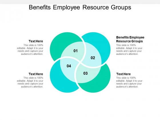 Benefits Employee Resource Groups Ppt PowerPoint Presentation Summary Introduction Cpb