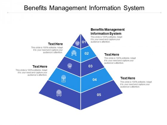 Benefits Management Information System Ppt PowerPoint Presentation Styles Cpb
