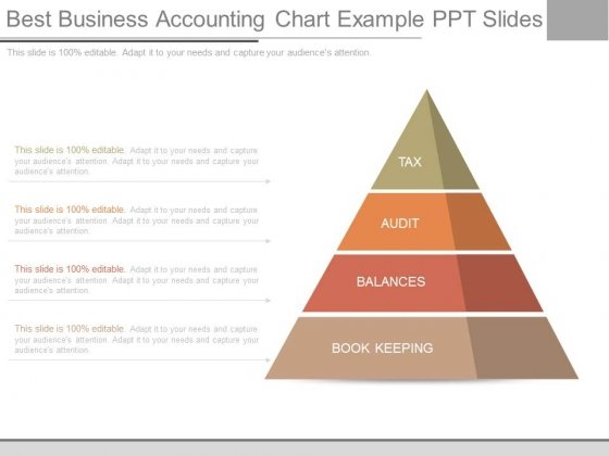 Best Business Accounting Chart Example Ppt Slides