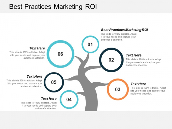 Best Practices Marketing Roi Ppt PowerPoint Presentation File Ideas Cpb