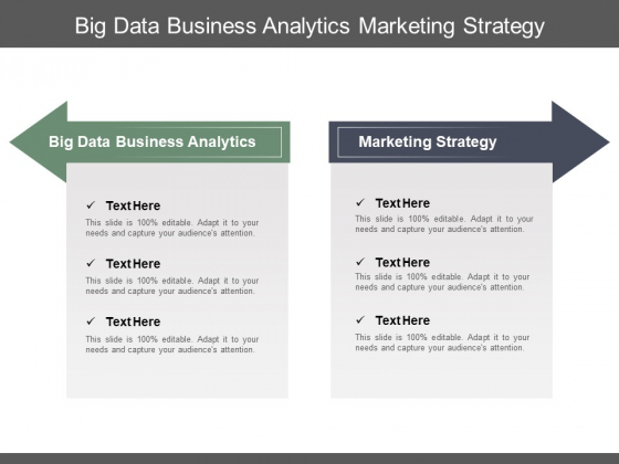 Big Data Business Analytics Marketing Strategy Marketing Demographics Ppt PowerPoint Presentation Gallery Inspiration