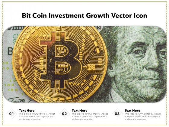Bit Coin Investment Growth Vector Icon Ppt PowerPoint Presentation Professional Vector PDF