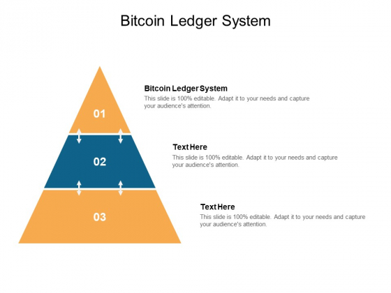 Bitcoin Ledger System Ppt PowerPoint Presentation Professional Background Images Cpb