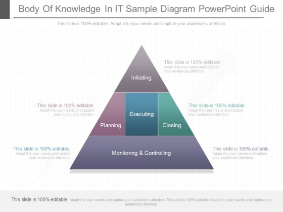 Body Of Knowledge In It Sample Diagram Powerpoint Guide