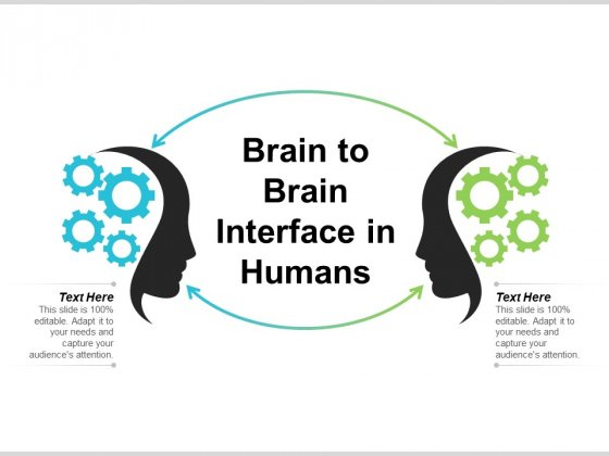 Brain To Brain Interface In Humans Ppt PowerPoint Presentation File Outline