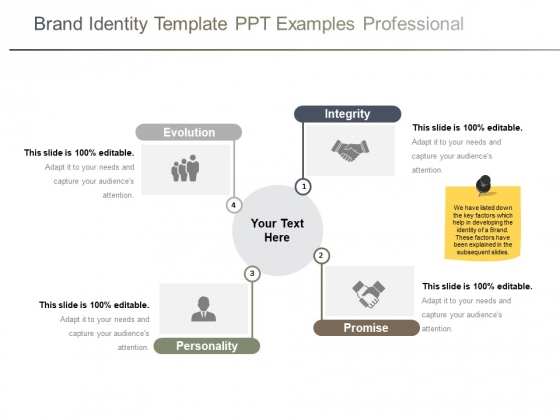 Brand Identity Template Ppt Examples Professional Ppt PowerPoint Presentation Infographic Template Themes