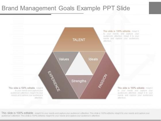 Brand Management Goals Example Ppt Slide