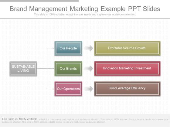 Brand Management Marketing Example Ppt Slides