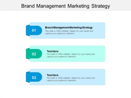Brand Management Marketing Strategy Ppt PowerPoint Presentation Inspiration Graphics Template Cpb
