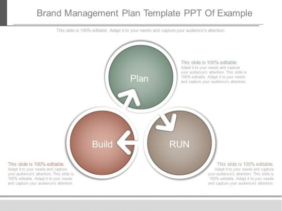 Brand Management Plan Template Ppt Of Example