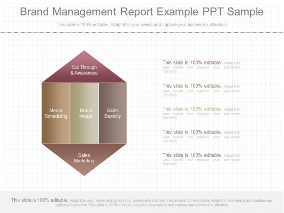 Brand Management Report Example Ppt Sample  Powerpoint Templates