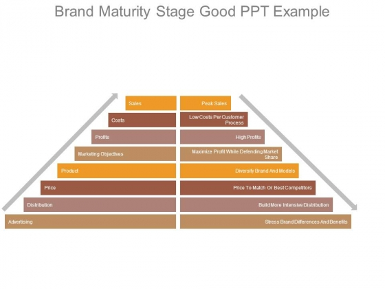 Brand Maturity Stage Good Ppt Example