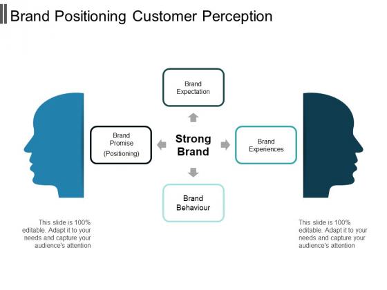 Brand Positioning Customer Perception Ppt PowerPoint Presentation Professional Background Designs