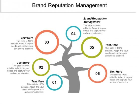 Brand Reputation Management Ppt PowerPoint Presentation Professional Gridlines Cpb