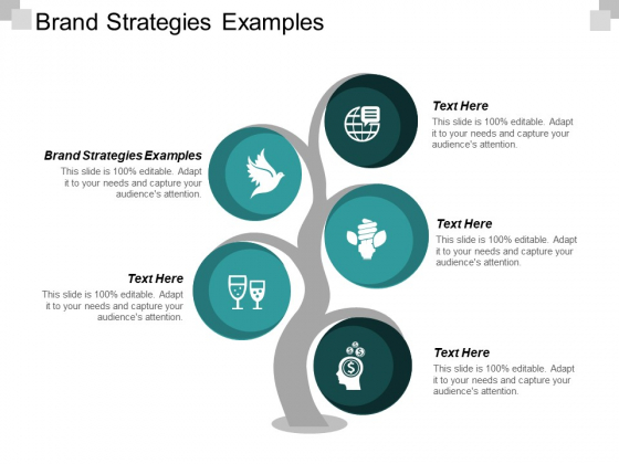 Brand Strategies Examples Ppt PowerPoint Presentation Backgrounds Cpb