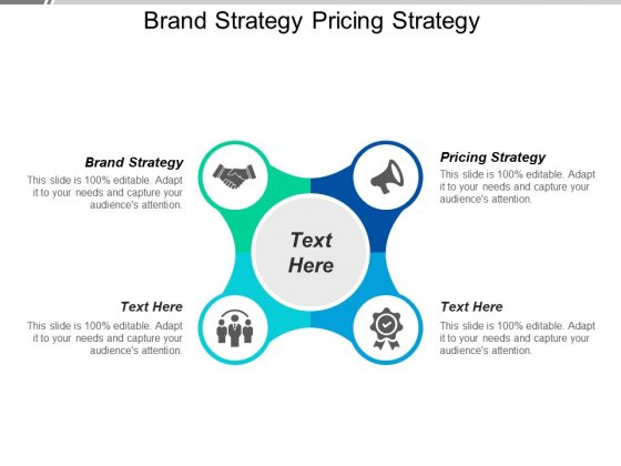 Brand Strategy Pricing Strategy Ppt PowerPoint Presentation Outline File Formats