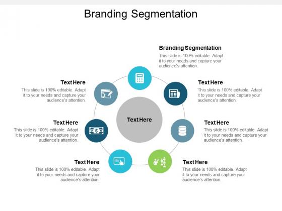 Branding Segmentation Ppt PowerPoint Presentation Model Maker Cpb