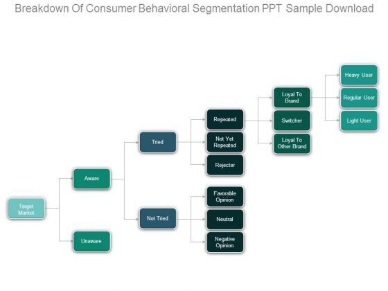 Breakdown Of Consumer Behavioral Segmentation Ppt Sample Download