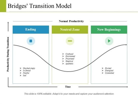 Bridges Transition Model Ppt PowerPoint Presentation Layouts Aids