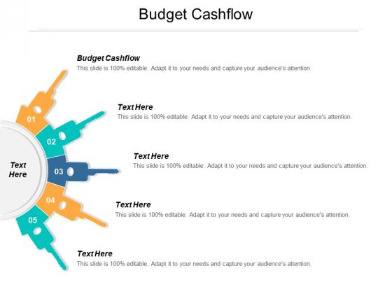 Budget Cashflow Ppt PowerPoint Presentation Inspiration Gallery