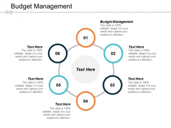 Budget Management Ppt PowerPoint Presentation Layouts Maker Cpb