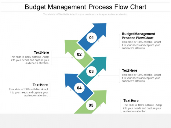 Budget Management Process Flow Chart Ppt PowerPoint Presentation Infographic Template Topics Cpb