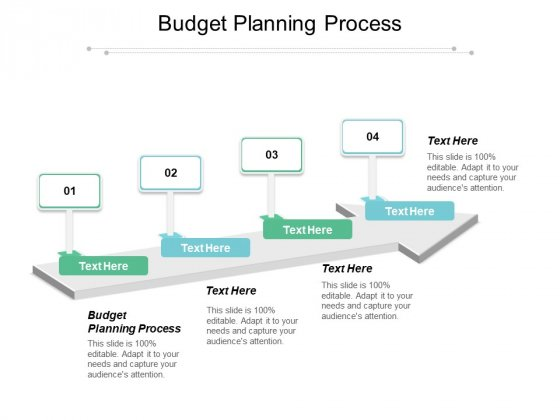 Budget Planning Process Ppt PowerPoint Presentation Summary Infographics Cpb