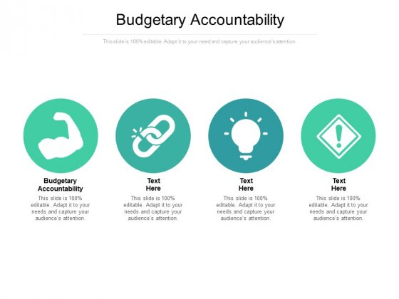 Budgetary Accountability Ppt PowerPoint Presentation Infographic Template Topics Cpb