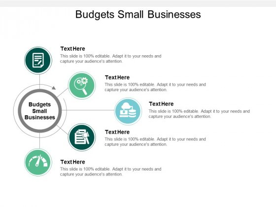 Budgets Small Businesses Ppt PowerPoint Presentation Styles Skills Cpb