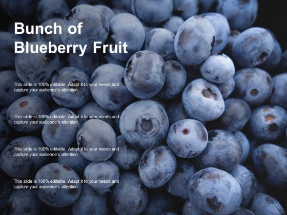 Bunch_Of_Blueberry_Fruit_Ppt_PowerPoint_Presentation_Model_Clipart_Images_Slide_1