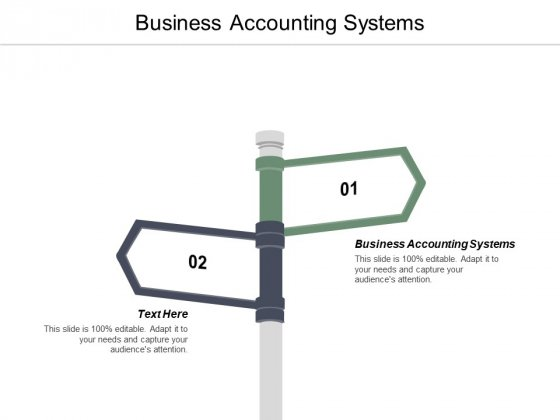Business Accounting Systems Ppt PowerPoint Presentation Styles Display Cpb