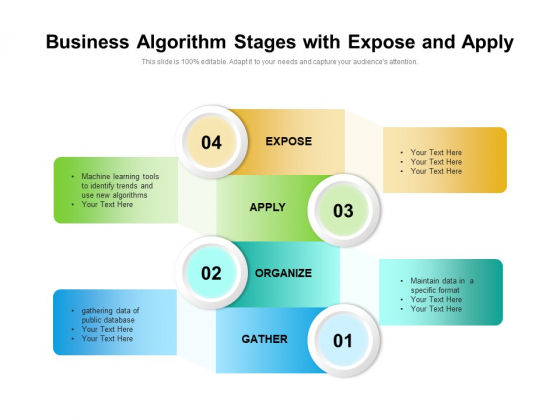 Business Algorithm Stages With Expose And Apply Ppt PowerPoint Presentation File Picture PDF
